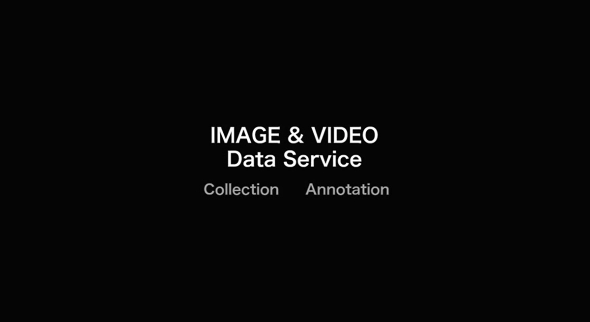 We provide image and video data collection and annotation service for you with our whole heart